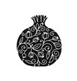 pomegranate ornate sketch for your design vector image vector image