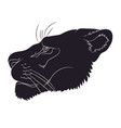 portrait of a cougar silhouette vector image