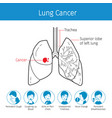 human lungs outline and lung cancer symptoms vector image