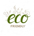 Eco Friendly hand drawn lettering vector image vector image