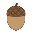 flat color acorn icon vector image