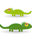 Funny green iguana on a white background vector image