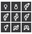 Gender symbol icons vector image vector image