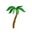 palm tree with bright green leaves and brown trunk vector image vector image