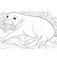 adult coloring bookpage a cute seal image vector image