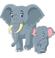 baby and mother elephant vector image vector image