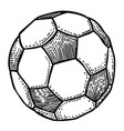 cartoon image of football ball icon soccer ball vector image vector image