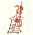 fashion kawaii bunny of a vector image vector image