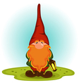 gnome with a red beard vector image