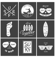 Surfer set Vintage elements and labels vector image vector image