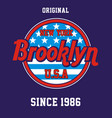 varsity new york city brooklyn vector image vector image