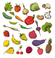 Vegetables and fruits drawing vector image