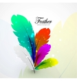 color feathers abstract background vector image