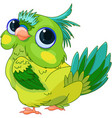 cute baby parrot vector image