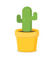 flat cactus in pot vector image