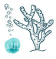 hand drawn aquatic coral doodle vector image