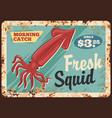 squid seafood metal rusty plate vector image vector image