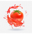 tomato juice fresh splash realistic icon vector image vector image