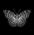 tropical butterfly black and white hand-drawn vector image