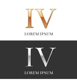 4 IV Luxury Gold and Silver Roman numerals sign vector image