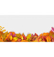 autumn banner fall leaves background realistic vector image vector image