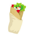 doner kebab meat and vegetables in pita vector image