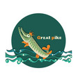 great pike pike in the crown royal fish vector image