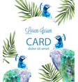 peacock tropic background watercolor summer vector image vector image