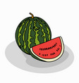 ripe red fruit watermelon vector image