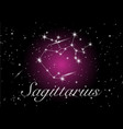 sagittarius constellations sign vector image vector image