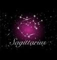 sagittarius zodiac constellations sign vector image vector image