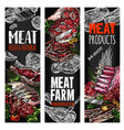 sketch meat farm fresh product banners vector image vector image