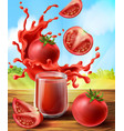 tomato juice in glass vegetable with vector image vector image