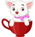 cute cat cartoon sitting in a red cup vector image vector image