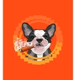 Cute dog head with a Cuban cigar vector image vector image