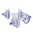 dumbbells doodle drawing vector image