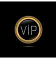 Golden VIP badge vector image vector image