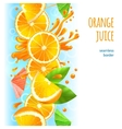 Orange juice border vector image vector image