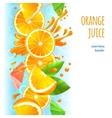 Orange juice border vector image vector image