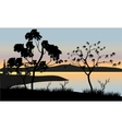 Tree at sunset scenery vector image vector image