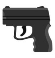 isolated firearm icon vector image