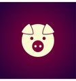 Pig Icon concept for design