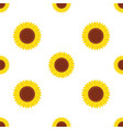seamless pattern with yellow sunflowers vector image