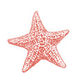 starfish sketch starfish hand drawing vector image