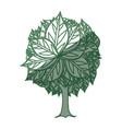 tree natural ecology vector image vector image