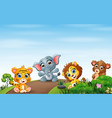 wild animals sitting on road vector image vector image