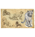 Animals theme BIG CATS - hand drawn pack vector image