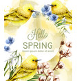 hello spring card watercolor with cute vector image vector image