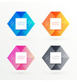 hexagonal banners set with text space vector image vector image