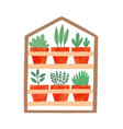 houseplants in ceramic pots flat vector image